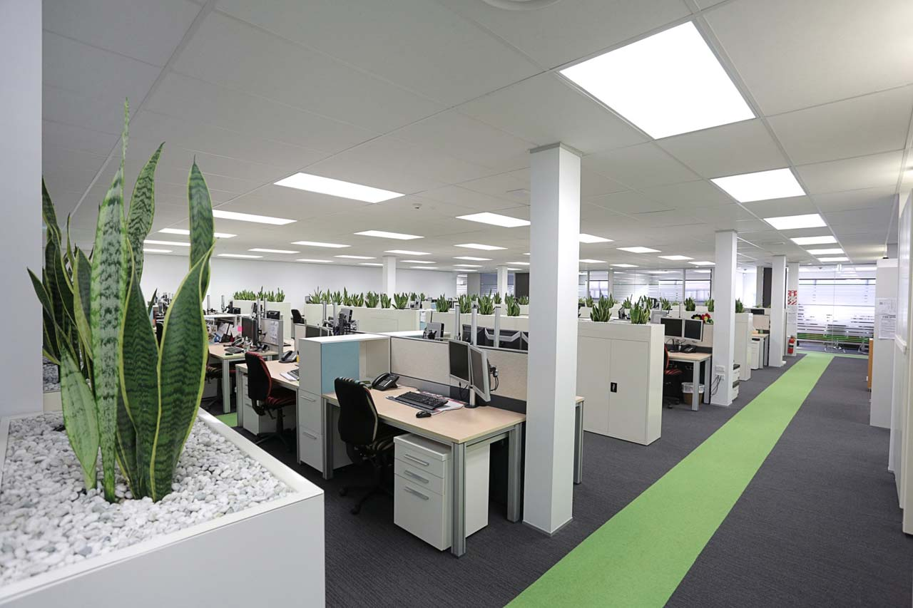 office design by office fit out